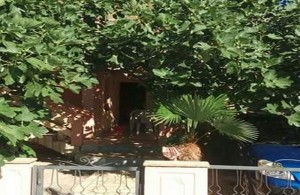 thumb_1331502_ir_apartments_island_vir_private_accommodation_croatia_1.jpg