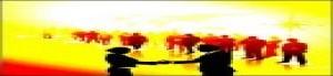 thumb_2092911_thumb_321551_24288_clip_image002-1-.jpg