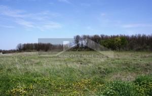 thumb_2329972_joprivredno-zemljiste--prodaja--residence-nekretnine--3-.jpg