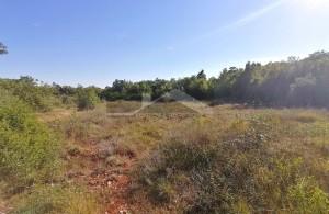 thumb_2347318_altura--poljoprivredno-zemljiste--agencija-residence--2-.jpg