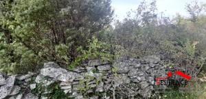 thumb_2392482_utkovici--poljoprivredna-parcela--agencija-residence--1-.jpg