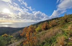 thumb_2496712_makarska-poljoprivredno-zemljiste--1-.jpg
