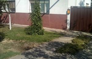 thumb_2646867_mokrinkuca1.jpg